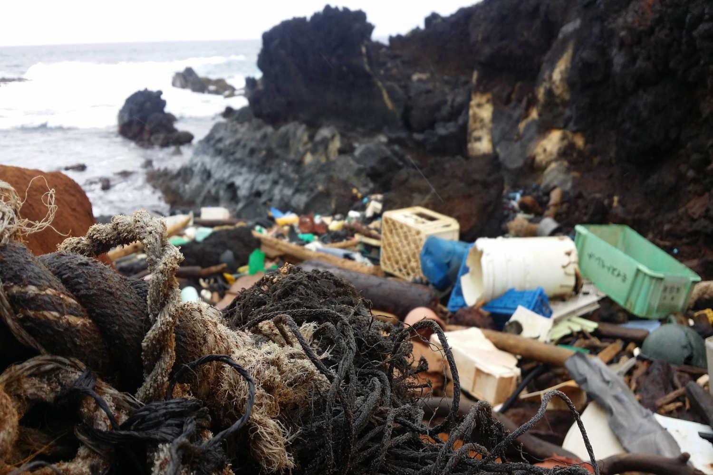 Hawaii ist doch nur eine Plastiktüte